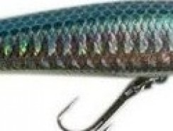 Rapala X-Rap Jerk bait 08 Fishing Lures
